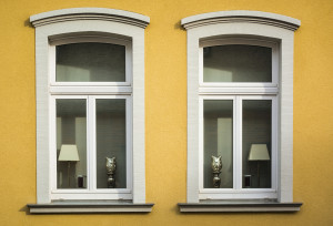 Twin windows